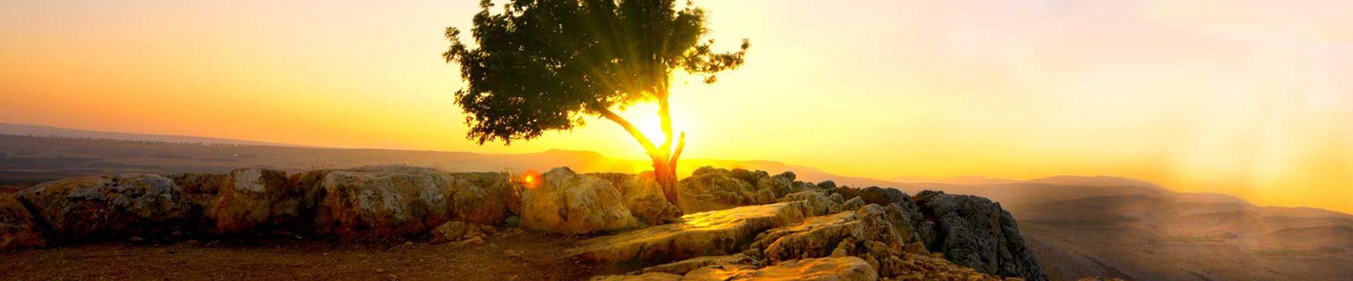 Israel-Family-Journey_Sunrise
