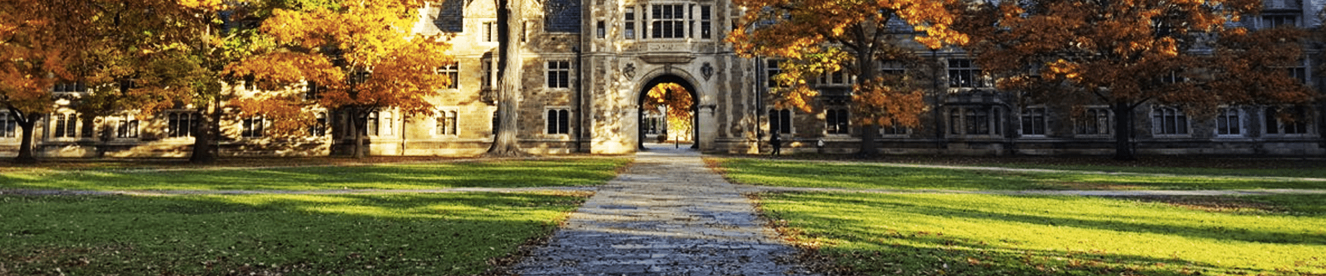 A college campus on a fall day with a stone pathway.