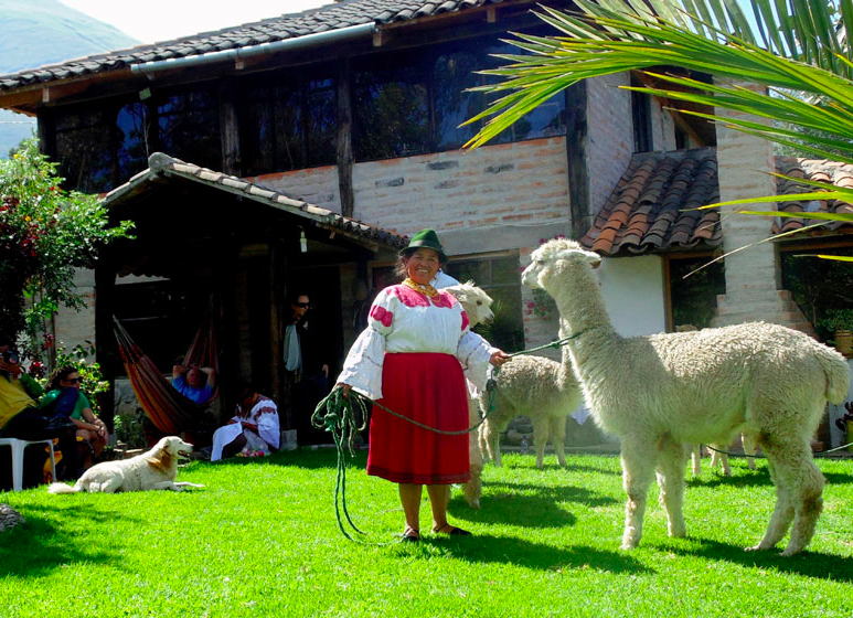 San Clement woman and alpaca